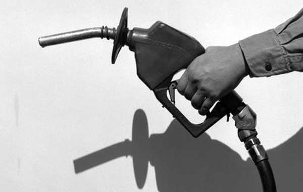 Oljen fra Copaifera langsdorfi kan enkelt brukes som biodrivstoff i  dieselmotorer. Nå skal treet dyrkes også i Australia for å bruke oljen til miljøvennlig drivstoff.