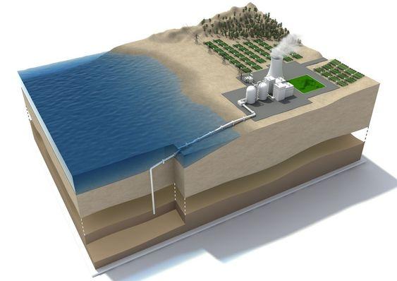 ALGEKRAFTVERK: Storstilt algedyrking, kraftproduksjon med biobrensel som drivstoff og CO2-fangst. Til sammen blir det ikke bare karbonnøytralt, men karbonnegativt, ifølge Bellona.