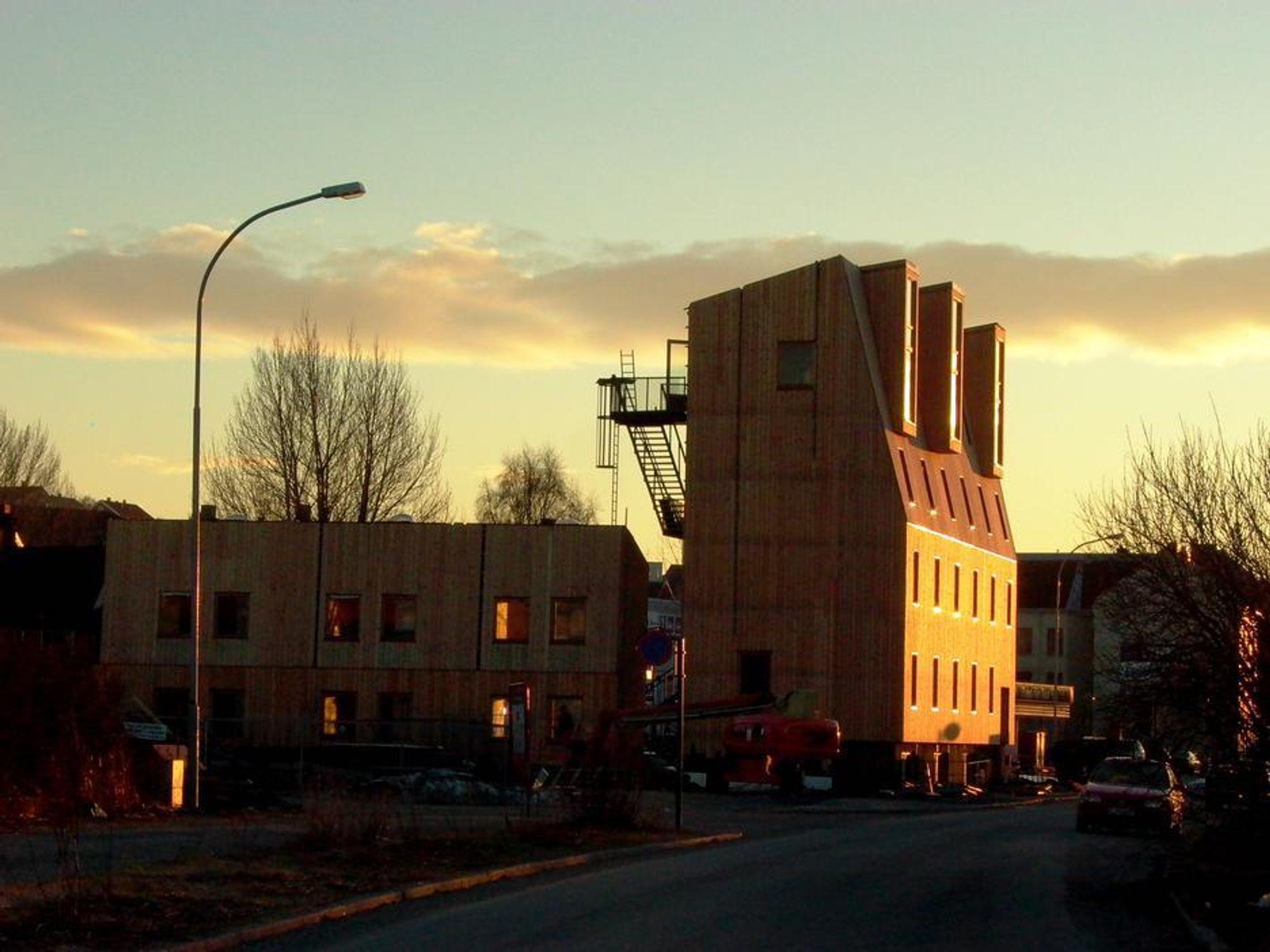HØYT OG MASSIVT: Studenthuset på Svartlamoen i Trondheim, som Brendeland & Kristoffersen Arkitekter står bak, er 17 meter høyt og bygd i massivt tre. Slike vil det bli mange av om 30 år, spås det i en fremtidsrapport fra If Skadeforsikring.
