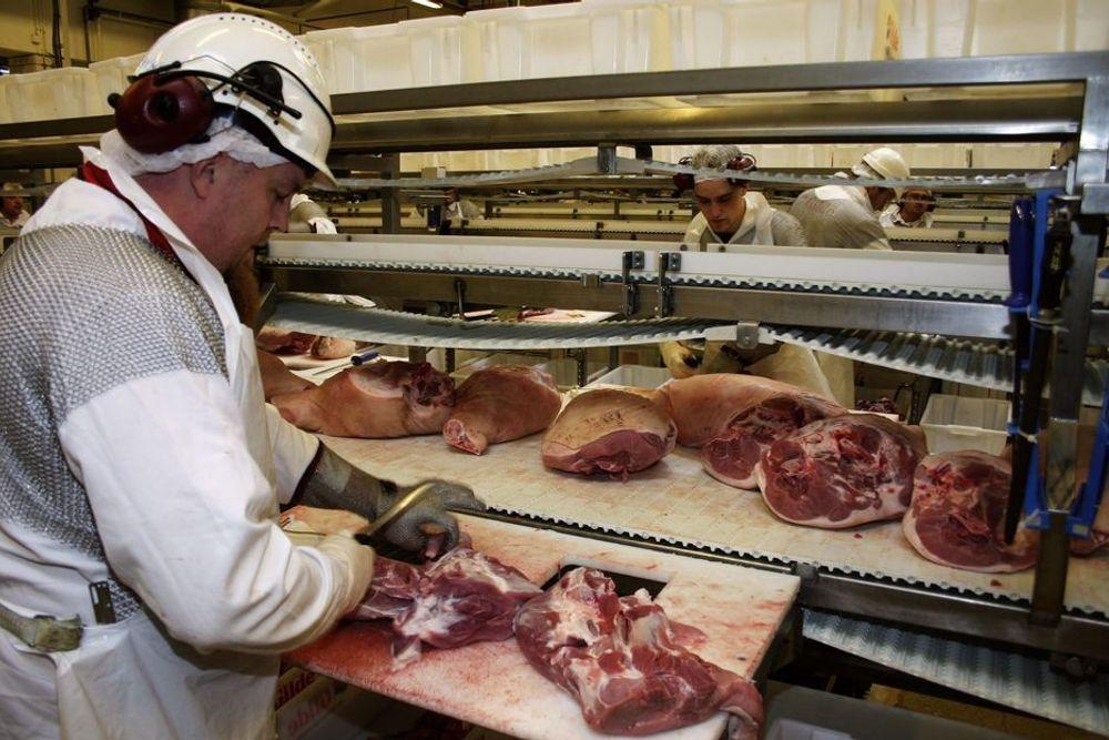 UTVIDE?: Nortura vurderer å utvide fabrikken i Trondheim til å kunne slakte og skjære storfe og småfe.