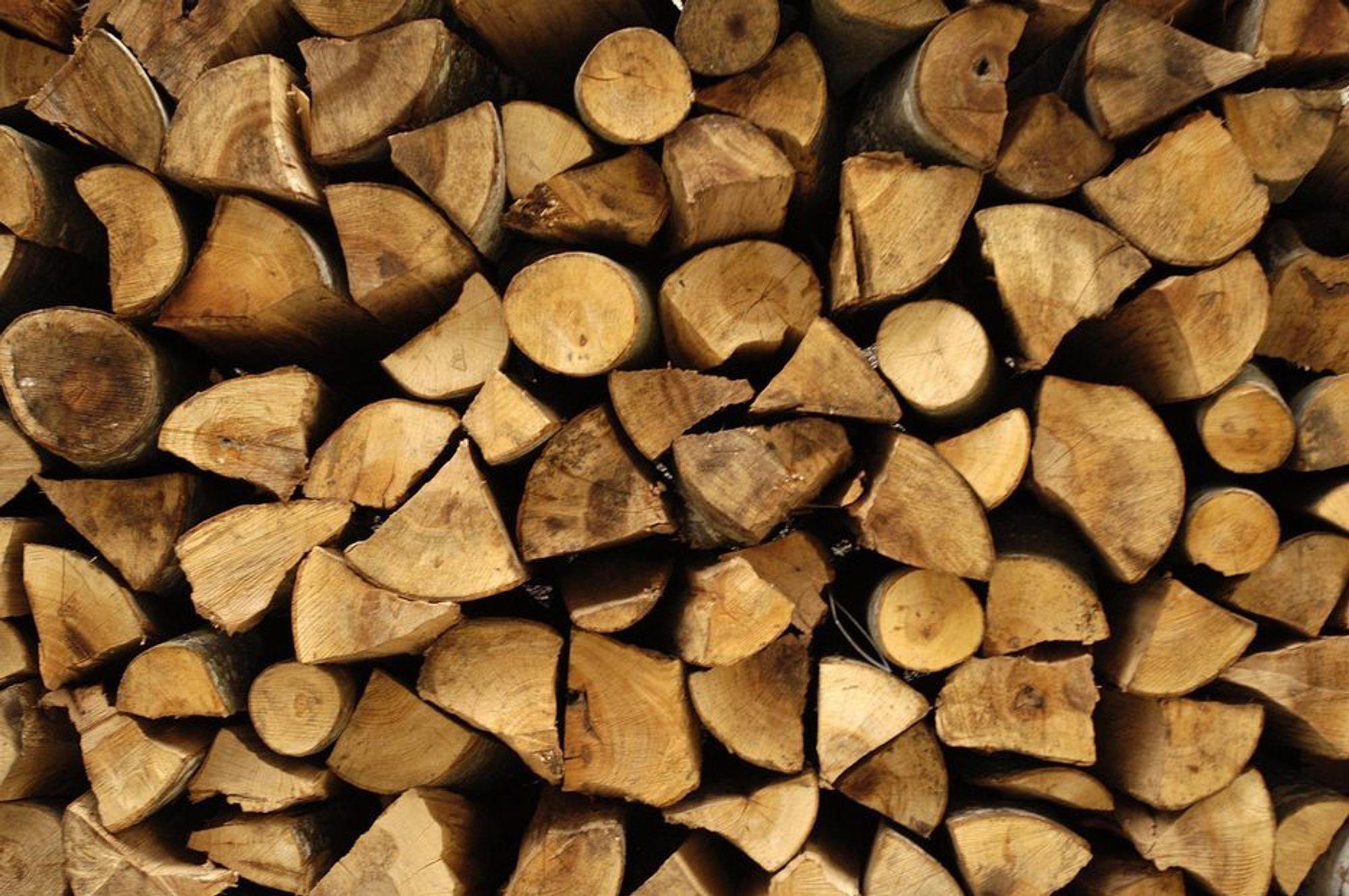 Skogindustrien skal bli lønnsom ved hjelp av 750 millioner fra regjeringen.
