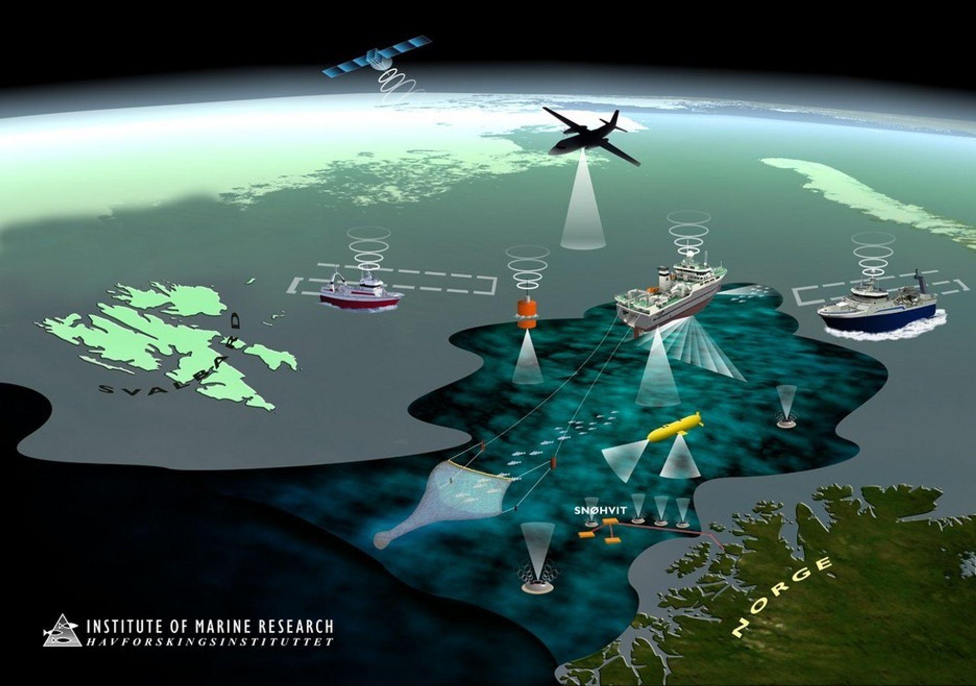 OVERVÅKING: Forskningsprosjektet Nordområdenes Nye Nervesystem skal bidra til bedre og mer automatisert overvåking av tilstanden i havet.