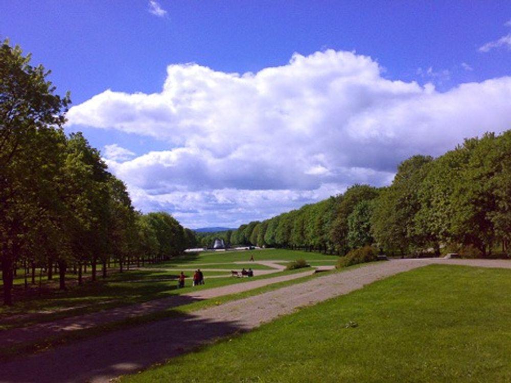 GRØNT: Britiske forskere mener en kan bøte på global oppvarming ved å bygge flere parker og grøntområder. Her fra Frognerparken.