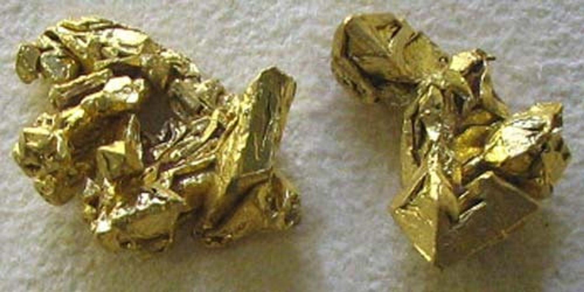 Gullklumper. Kan det bli gullrush i Finnmark?