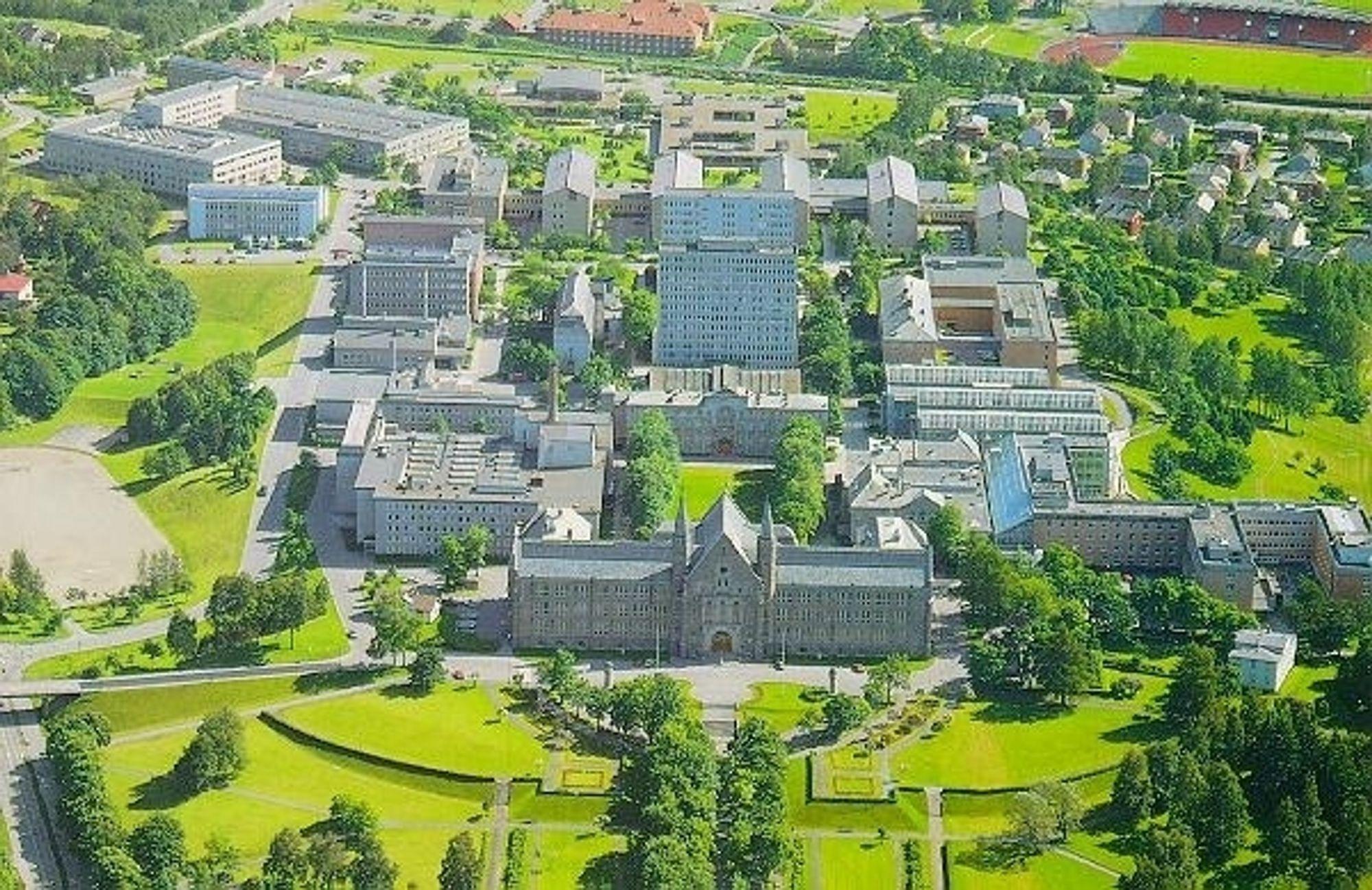 NTNU Gløshaugen. Universitet. Studier. Studere. Student. Sivilingeniør. Teknolog. Teknologi.