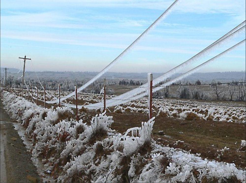 NYE TIDER: Fra i år får nettkunder kompensasjon om strømmen er borte mer enn 12 timer. Men nettselskapene forholder seg ulikt til ekstremværtrusselen. Bildet er tatt etter en isstorm i Oklahoma.