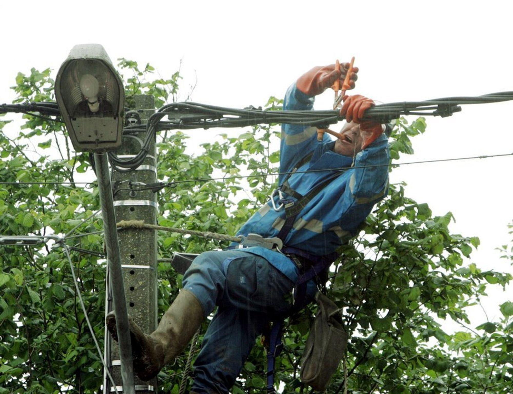 MÅ VEDLIKEHOLDE UANSETT: Alle kraftlinjer et kraftselskap har konsesjon for å bruke, må vedlikeholdes på samme nivå som hovedkraftlinjen, slår NVE fast.