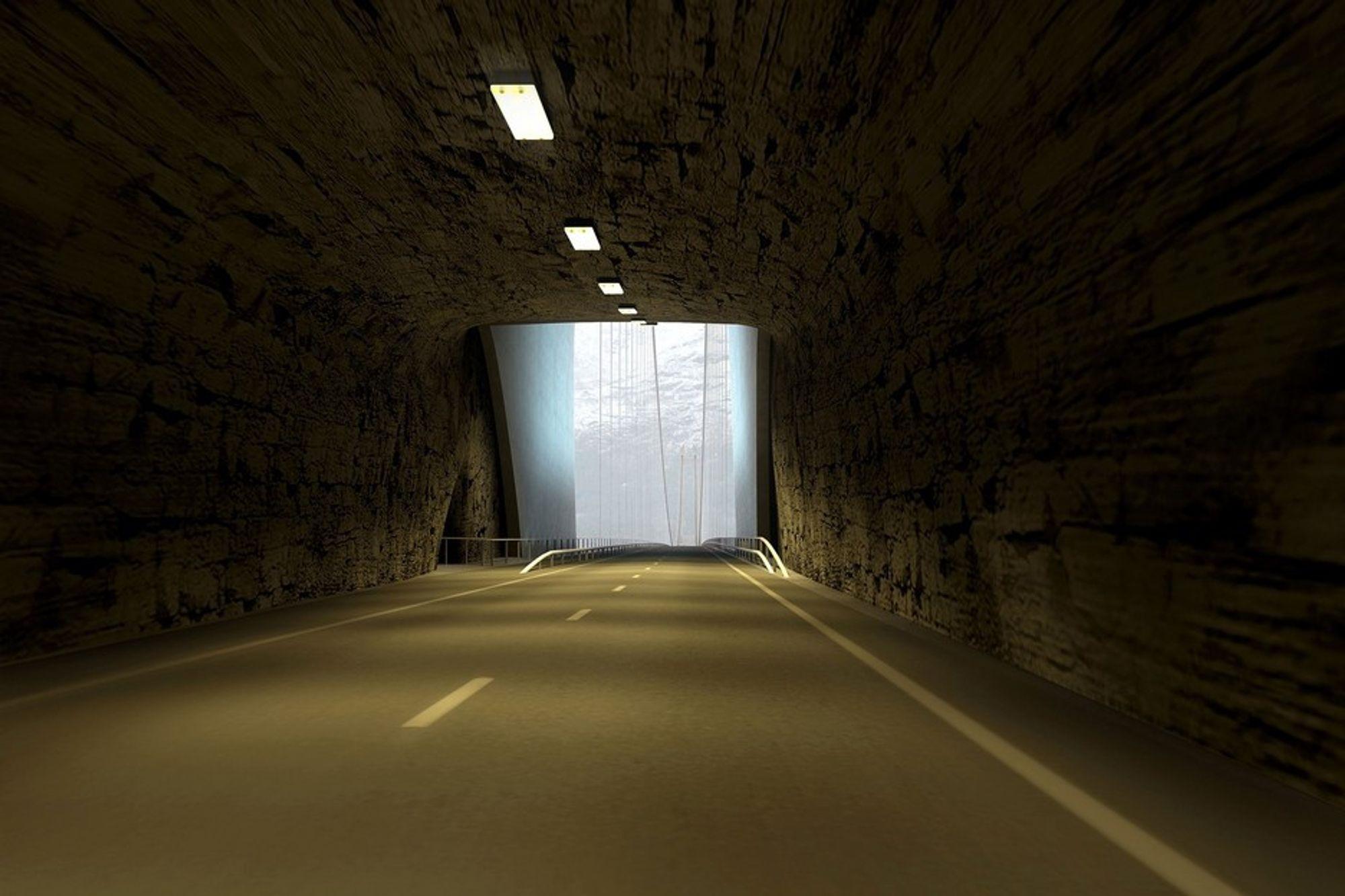 Hardangerbrua, 138 meter fra åpningen i tunnelen.
