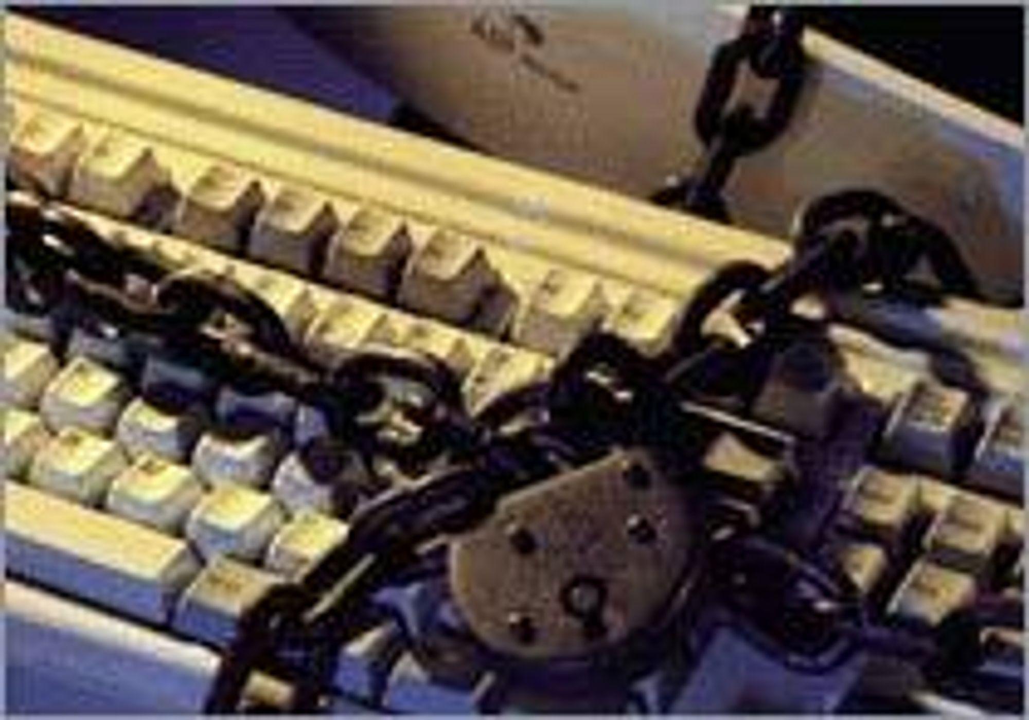 IT data datakrim datasikkerhet IT-krim it-sikkerhet hacker datasnoking spam virus