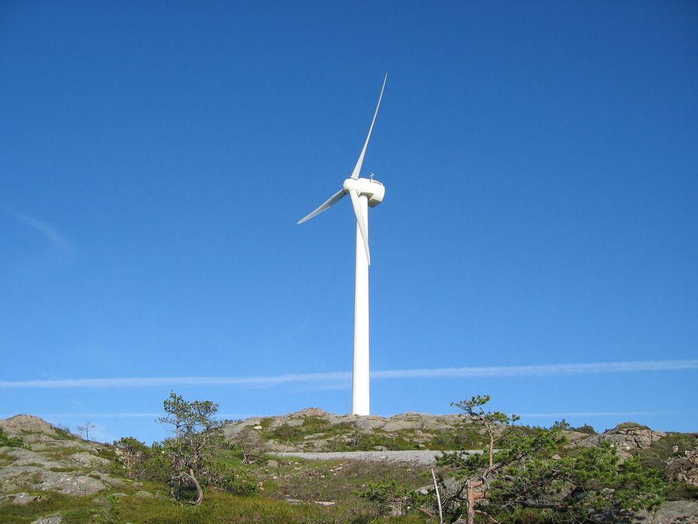 Dette er ScanWinds vindturbiner på Hundhammerfjellet i Nord-Trøndelag.