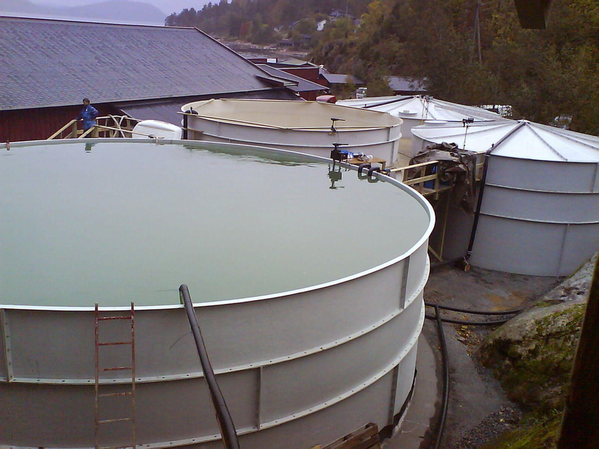 FULLSKALA: Ved NIVAs datterselskap BallastTech ved Solbergstrand Marine Forskningsstasjon i nærheten av Drøbak testes renseutstyr for ballastvann i full skala.