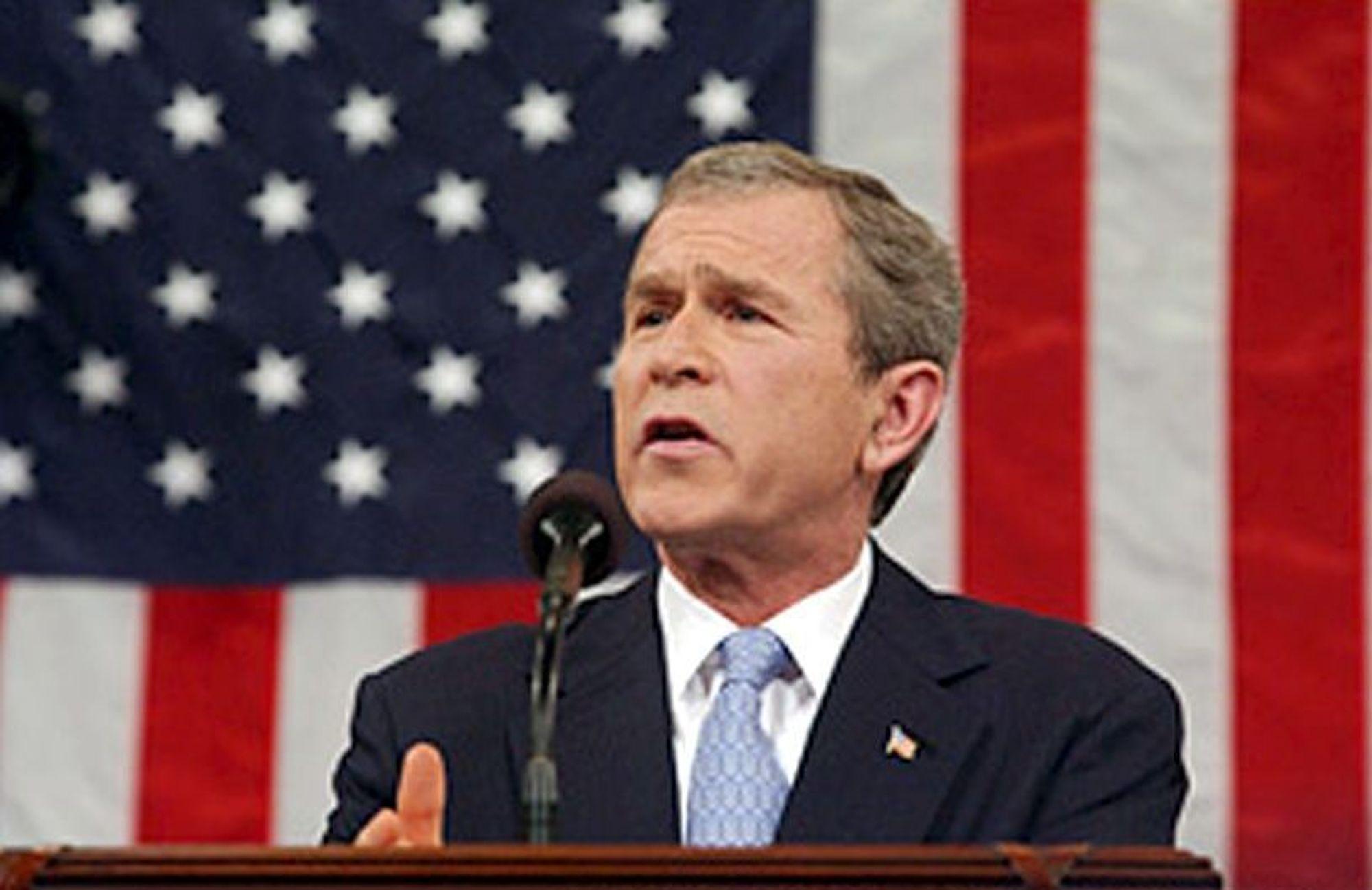 VERN: President George W. Bush, USA, begrenser antall utlendinger som får arbeidstillatelse. Det går ut over høyteknologibedrifter som vil importere nødvendig arbeidskraft.