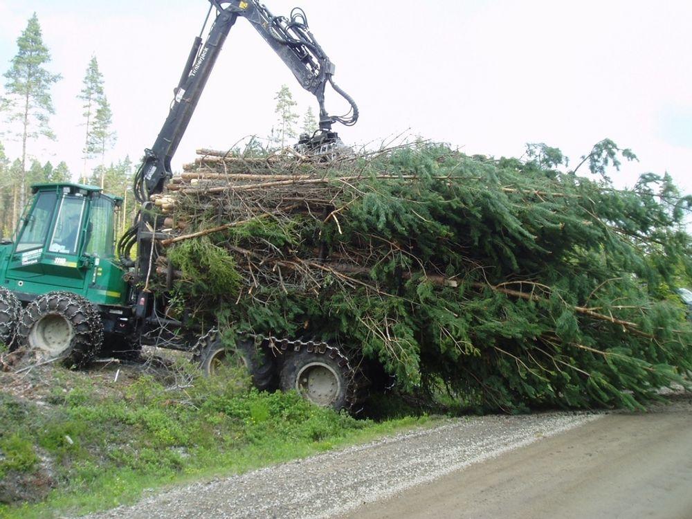 Skogsmaskinene kan gå varme dersom de skal forsyne flere biokraftverk  med råstoff fra skogsdrift.