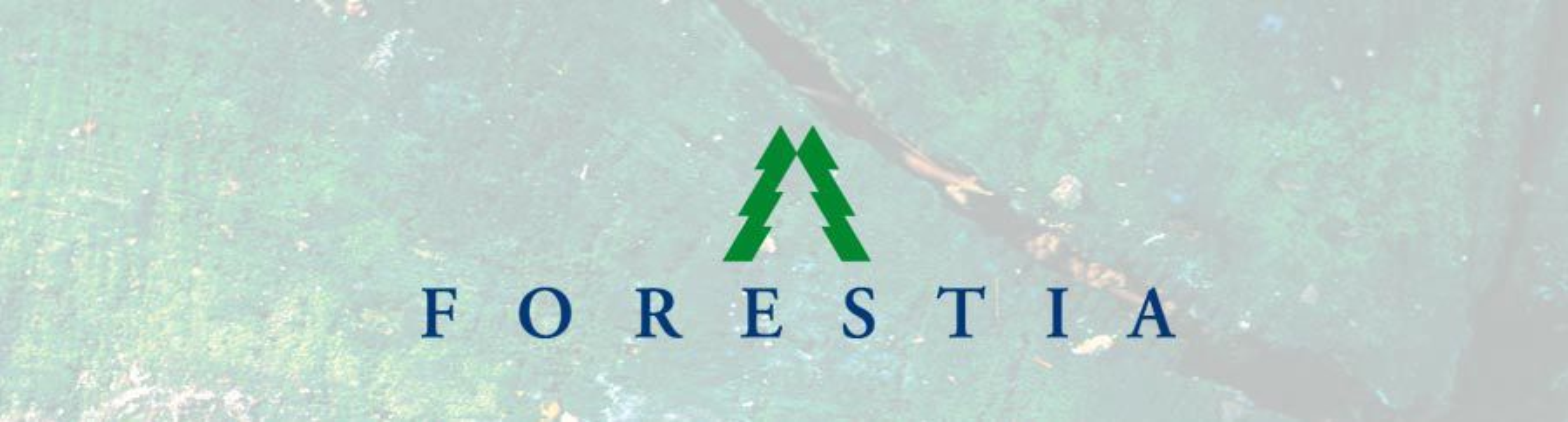 Norske Skog selger Forestia