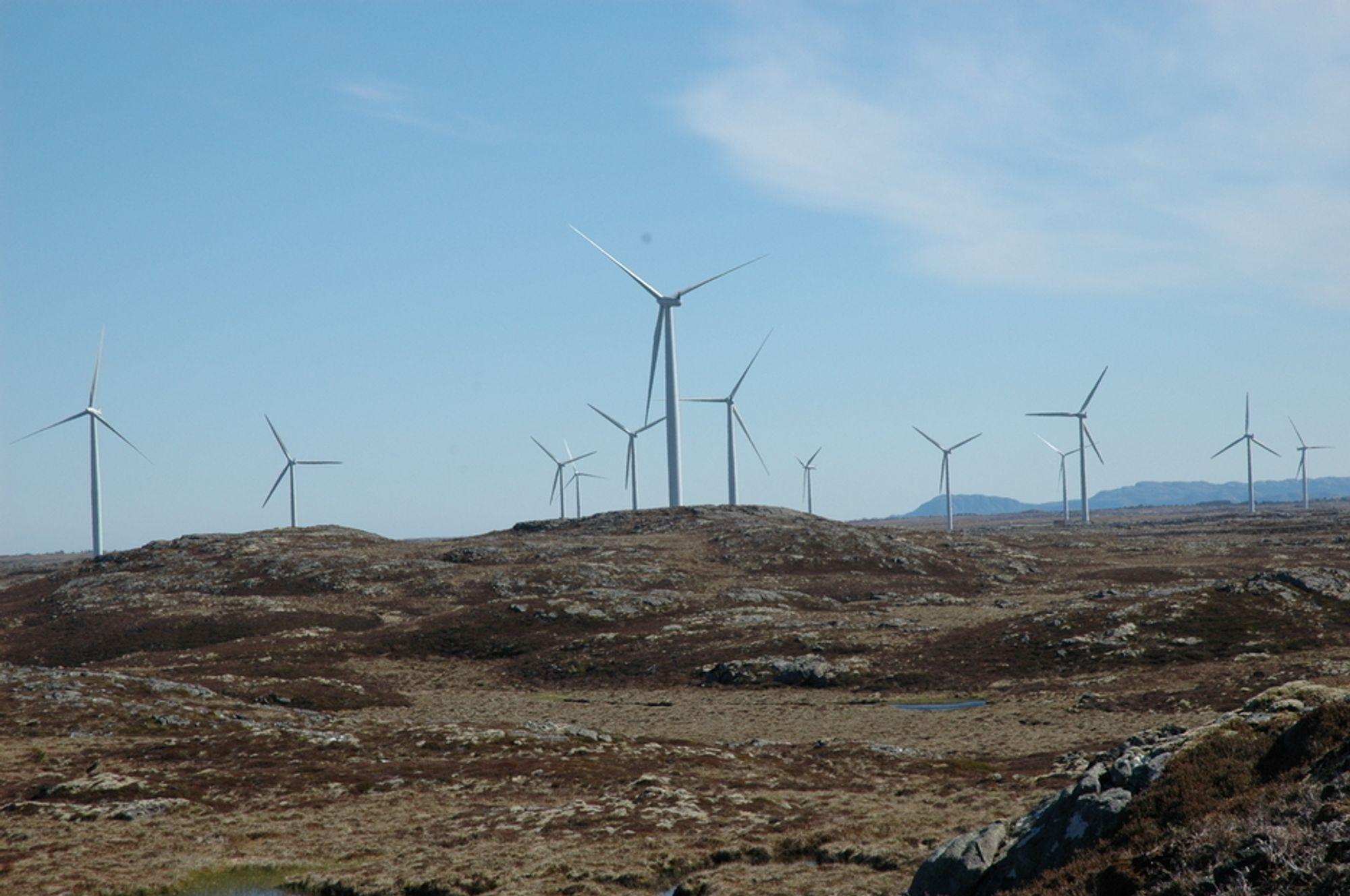 VINDTURBINER PÅ SMØLA: På grunn av prosjektsommel med vindkraftanlegg, må Norge stille bak i køen hos produsenter av vindturbiner som ser det for risikabelt å satse på det norske markedet.
