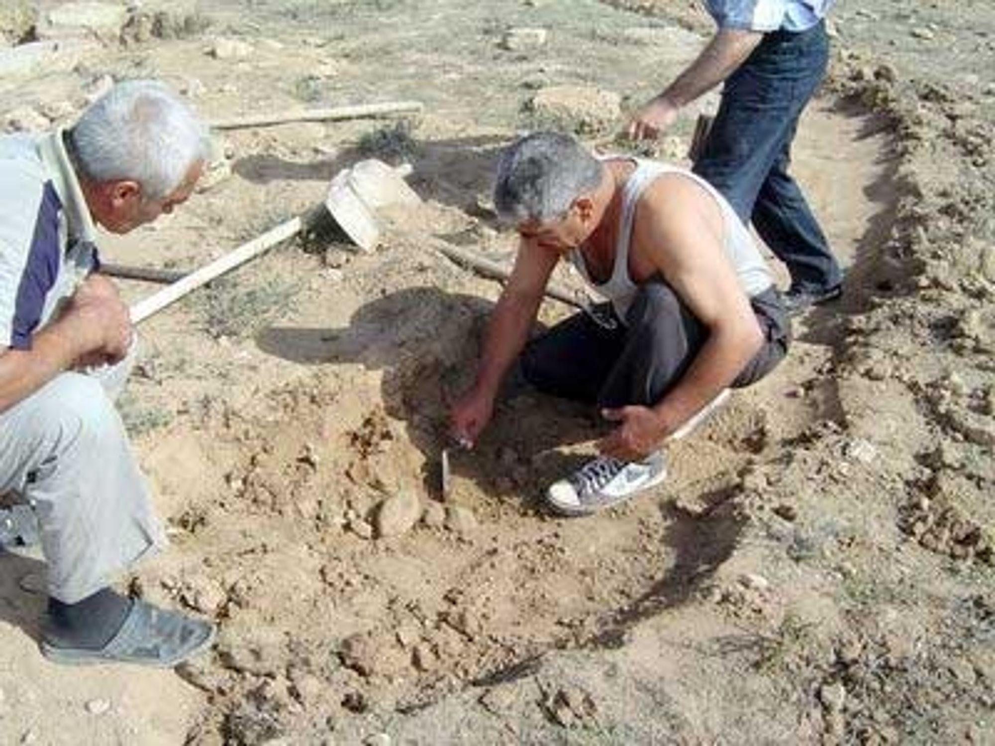 Nett-arkeologi rundt Middelhavet