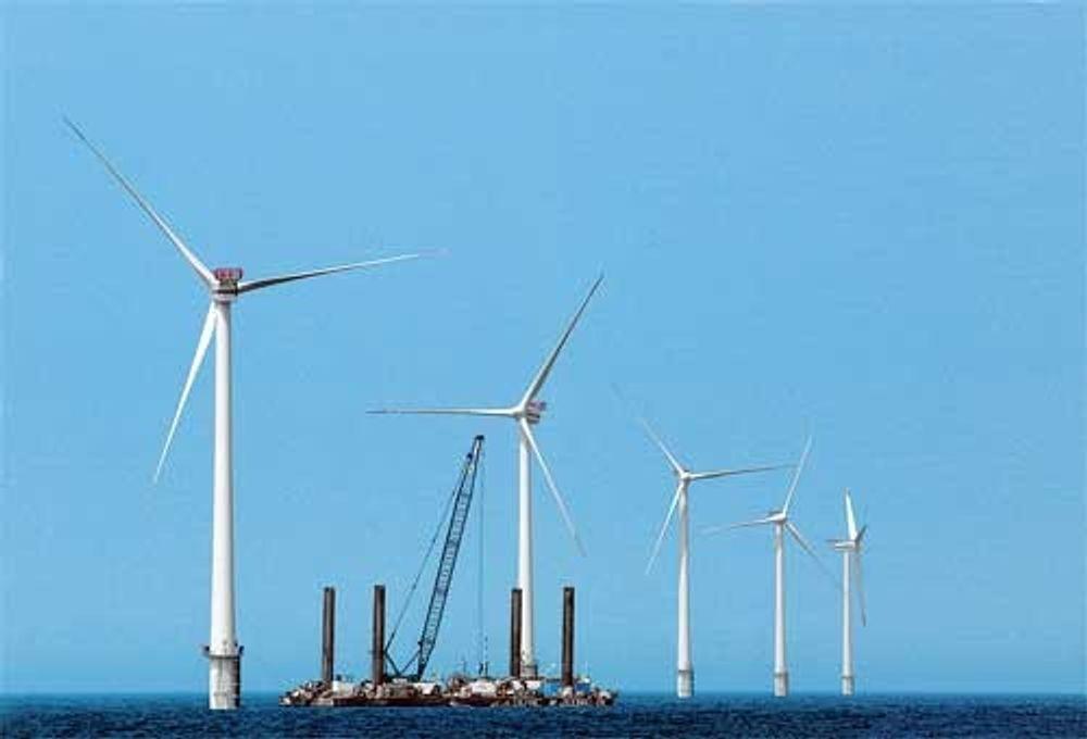Etter en katastrofalt dårlig start i 2004, synes nå vindturbinene på Horns Rev utenfor vestkysten av Danmark å være kommet godt i gjenge.
