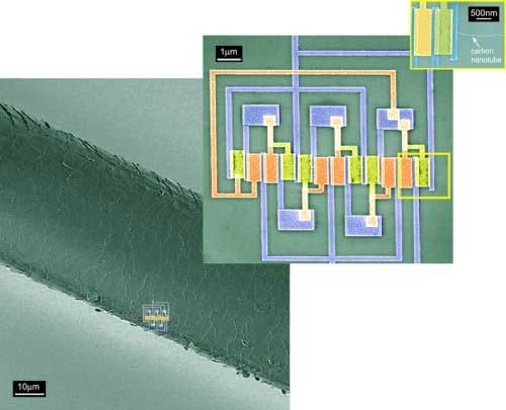 Bildet viser størrelsen på IC-en (figuren øverst til høyre) i forhold til et hårstrå.