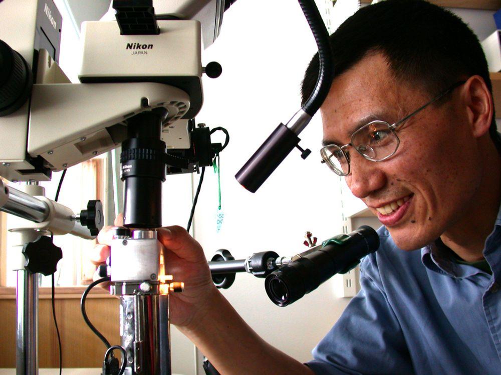 Professor Zhiliang Zhang skal lede det nye nanomekaniske laboratoriet på Gløshaugen.