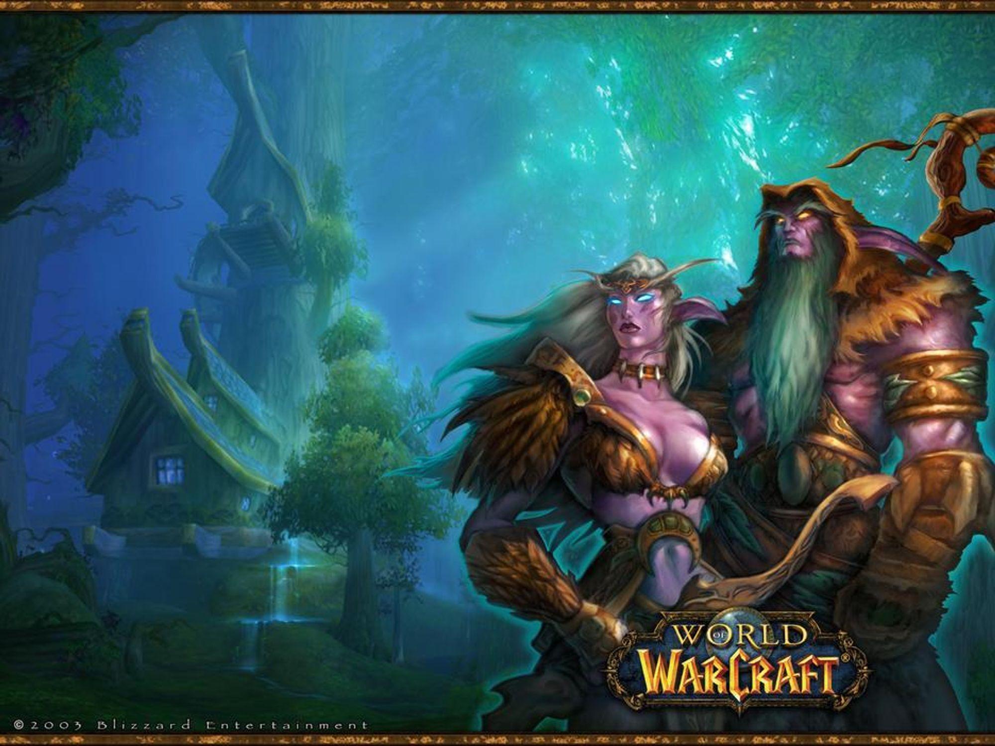 HERLIG GRAFIKK: World of Worldcraft er ett av mange spill som krever et grafikkort med muskler.