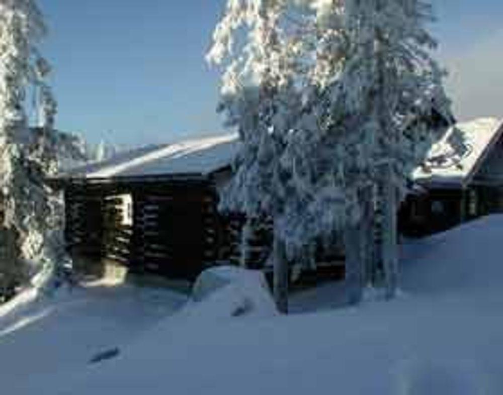 Snømåking fra hyttetak er fortsattt nødvendig. Ikke alle takkonstruksjoner er dimensjonert for snørike vintre.