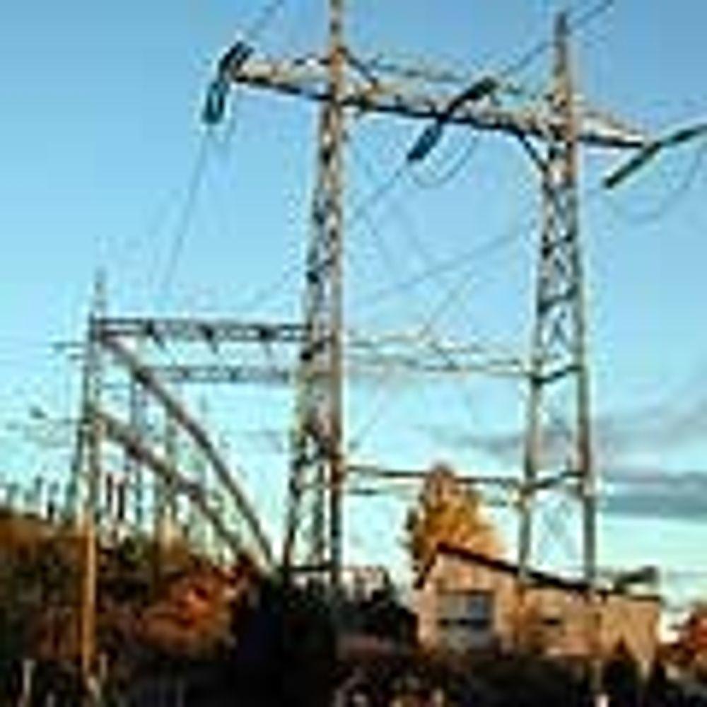 Flere skifter strømleverandør