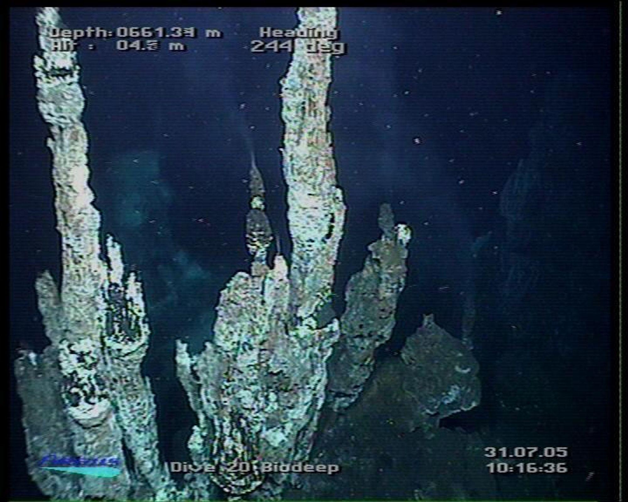 Høsting av ressusrer fra havbunnen krever ny kunnskap og teknologi. Her  skorsteiner med varmtvann på 600 meters dyp.