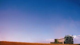 Dyrk biodrivstoff i Norge