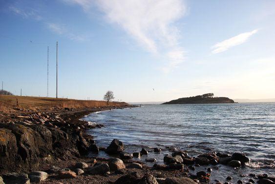 Aksjonister frykter at kystlinjen langs Jeløya skal bli ødelagt av en ny Oslofjordkryssing.