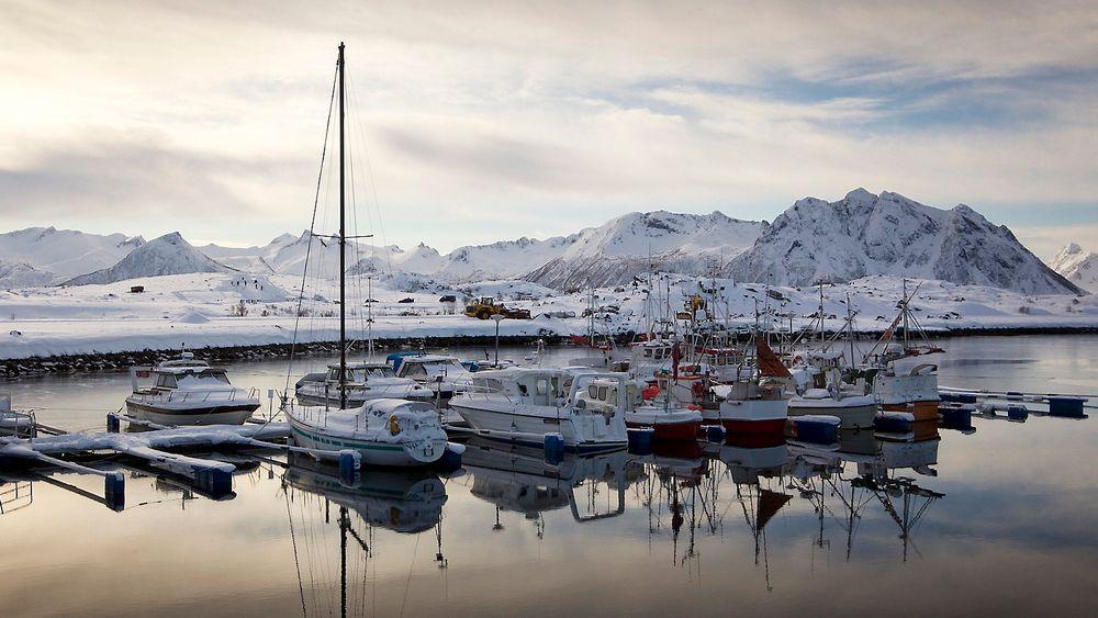 Arbeiderpartiet vil utrede Lofoten for petroleumsutvinning. Det får miljøbevegelsen til å se rødt.