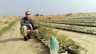 Norsk Petter Smart-duo kan gjøre om ørken til matjord på syv timer