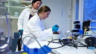 Norsk vaksine-gjennombrudd: Har begynt testing på mennesker