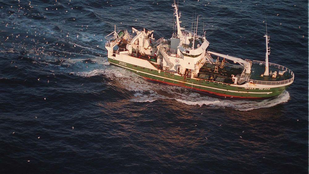 Et dansk prosjekt skal undersøke mulighetene for å bruke droner med laserteknologi for å finne fisk.