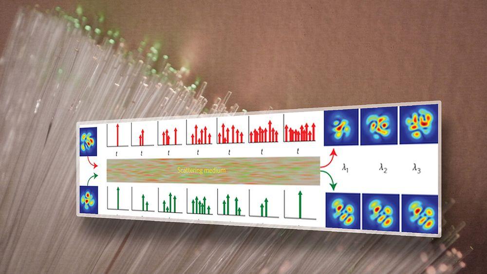 Øverst ser vi sending av vilkårlige signaler, som ved utgangen gir ulike pulser. Under ser vi forskernes metode for å sende inn signaler, som gir samme resultat hver gang.