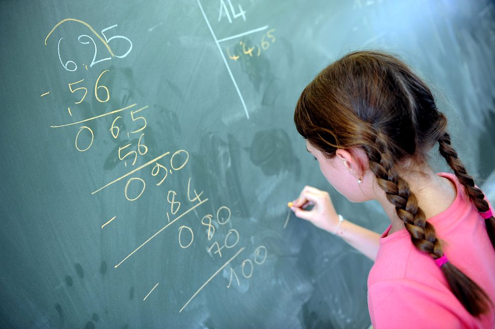 Omkring 15.000 mattelærere i grunnskolen mangler mattekompetanse for å oppfylle kravene til å undervise i mattematikk. Dermed er det stort behov for de ekstra 350 realfagslærerne som vil bli utdannet gjennom de nyopprettede studieplassene i PPU.