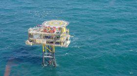 Enkelte ubemannede plattformer i Nordsjøen er blitt annektert av fjærkre.