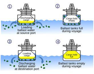Skissen viser hvordan ballastvann brukes for å stabilisere skip, avhengig av hvor mye last skipet bærer.