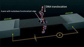 DNA-sekvensering kan potensielt gå unna i en fei ved hjelp av kjemisk modifisering og grafén.