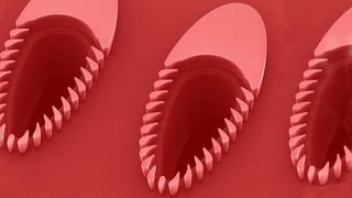 Hvite blodlegemer er fem mikrometer store. Denne dingsen kan skille ut partikler på to