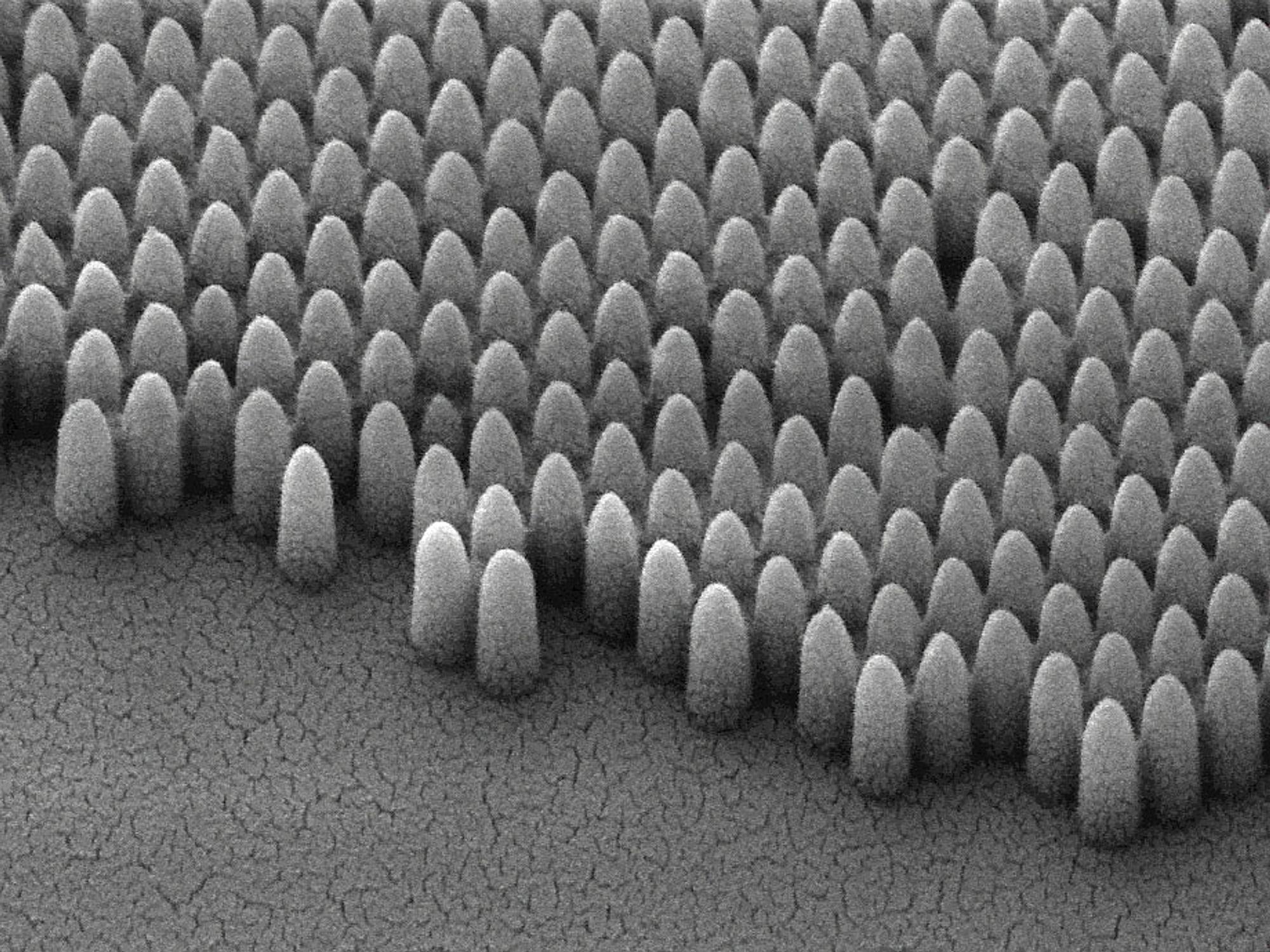 Nanostrukturen avviser vann og minsker gjenskinner fra sollys.