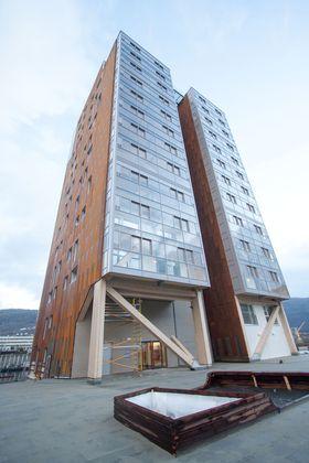 Treet, Damsgårdsveien, Bergen