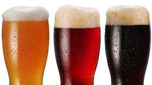 Lær om øl av en ekte bryggmester