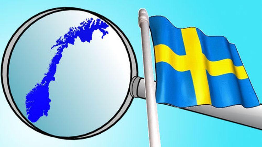 Vil stoppe svensk snoking