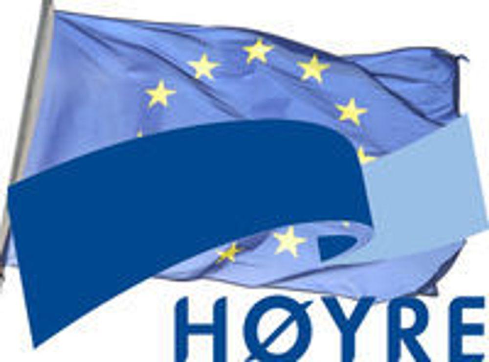 Innspurt for Høyres DLD-valg