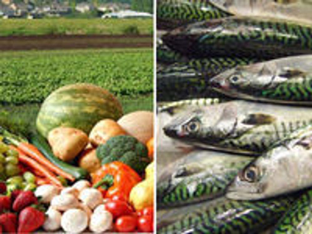 Eget selskap skal spore norske matvarer