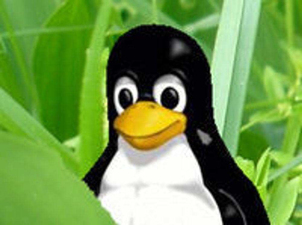 Disse bidrar mest til Linux-kjernen