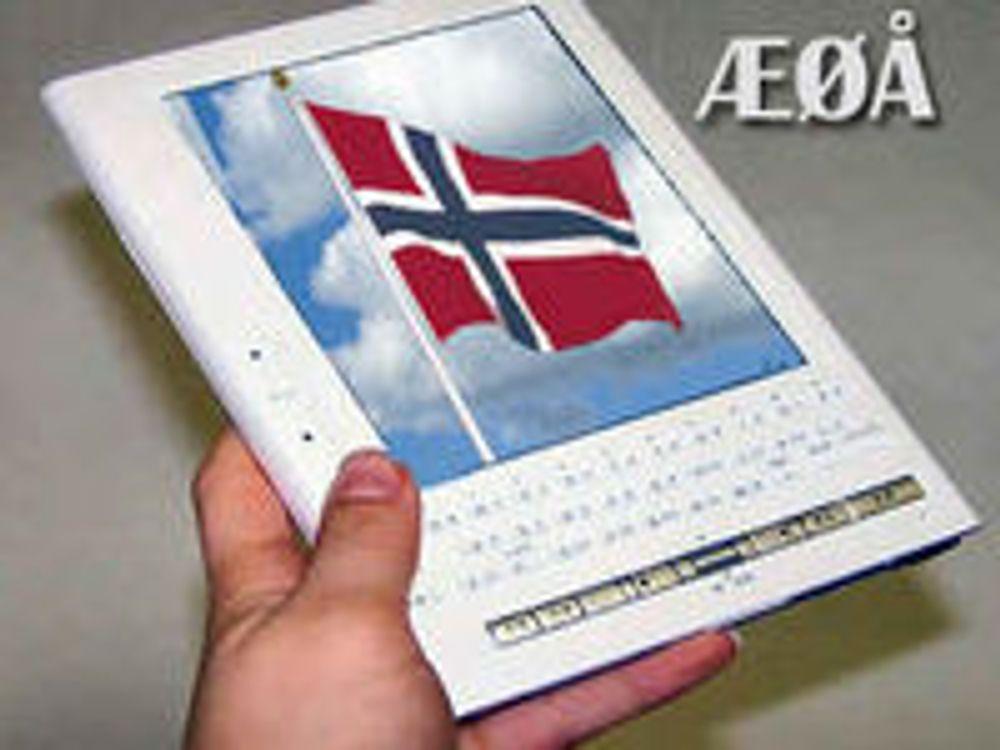 Vil ha egen løsning for norske e-bøker