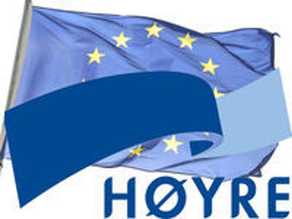 IKT-Norge skuffet over Høyres ja til DLD