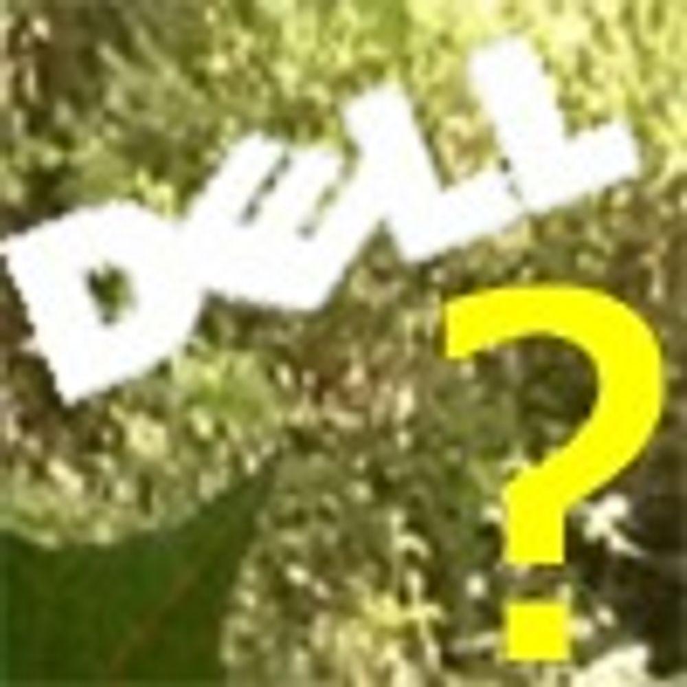 Hver tiende må gå i Dell