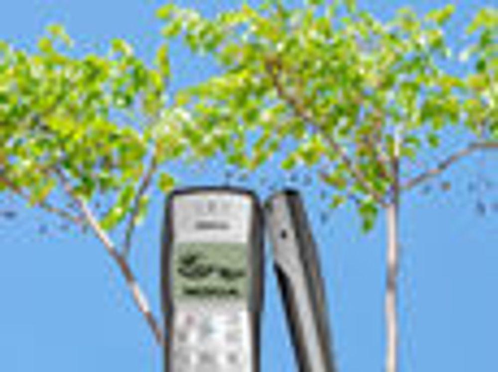 Gjør gamle mobiler til trær